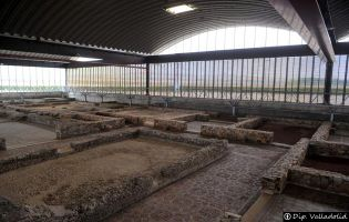 Yacimiento arqueológico - Almenara de Adaja-Puras