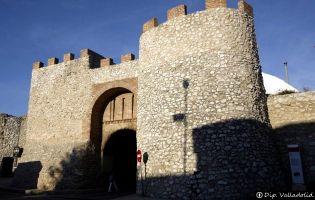 Puerta de Olmedo