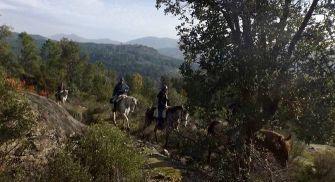 Rutas a caballo Burgos