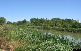 Canal de Castilla - Osorno
