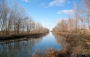 Canal de Castilla - Frómista