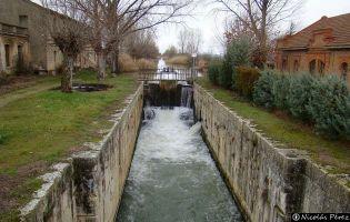 Canal de Castilla - Corcos del Valle