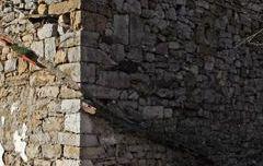 Torre de la Vid de Gordón