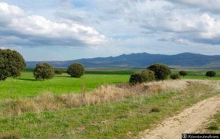 Cañada Real Leonesa - Valle de Amblés