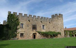 Casa Fuerte de San Gregorio - Almarza