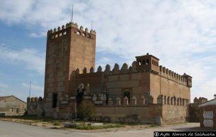 Castillo - Narros de Saldueña