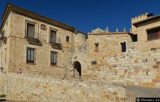 Puerta de Olivares - Zamora