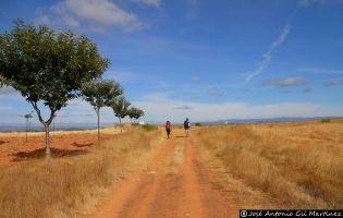 Camino portugués - San Martín del Pedroso