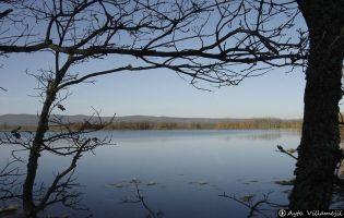 Ruta de la Laguna Gallega - Villamejil