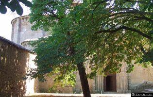 Monasterio - Carrizo de la Ribera