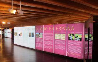 Museo provincial del Vino de Valladolid - Peñafiel