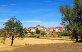 Museo del Vino y Centro de Interpretación de la Lana en La Horra - Ribera del Duero