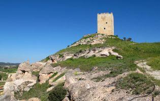 Castillos en la Ribera del Duero Soriana