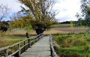 Ruta turística por el Valle del río Pirón