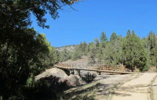 Sendero a pie o en bicicleta - Cañón del Río Lobos - La Fuentona