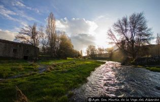 Río Alberche - San Martín de la Vega del Alberche.