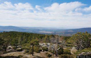 Alrededores de Quintanar de la Sierra