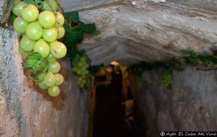 Bodega subterránea - El Cubo del Vino
