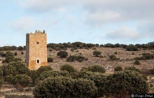 Torreón de Castellanos del Campo