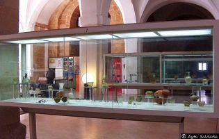 Museo de la Olmeda - Saldaña