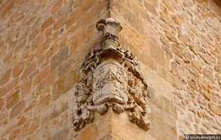 Escudo nobiliario - La Aldea