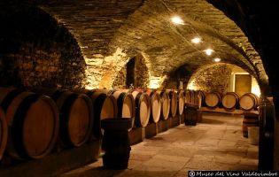 Museo del Vino - Valdevimbre