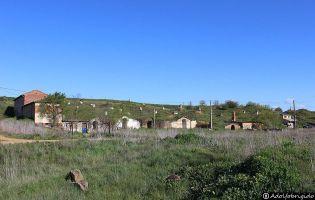 Bodegas tradicionales - Fresno de la Vega