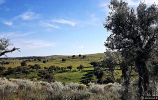 Villar de la Yegua