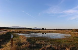 Sendero Los Llanos de Fresno de Cantespino