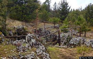 Torca Ancha - Hontoria del Pinar