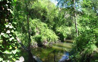 Río Cega - Afluente del río Duero