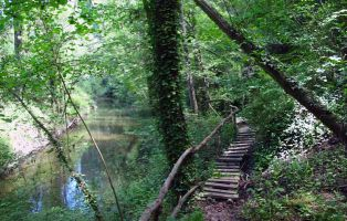 Pasarela de  madera - Senda de los Pescadores