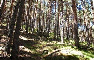 Qué ver en Segovia - Parque Natural El Chorro - Navafría