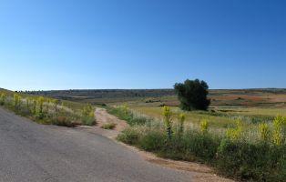 De Urueñas a Aldeonte por el Cañón de Bálsamos - Senderismo Segovia