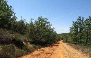 Tramo del sendero - Senderismo Segovia