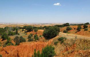 Cárcavas de Fresno de Cantespino - Senderismo Segovia