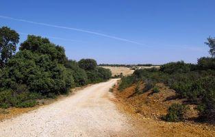 Cruce en uno de los tramos del sendero - Corral de Ayllón