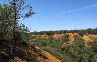 Laderas rojizas - El Encinar de Saldaña - Senderismo Segovia