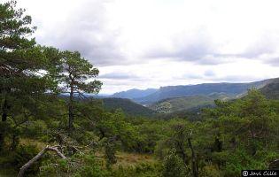 Valle de Losa.