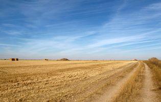Ruta de senderismo en Fuentemolinos
