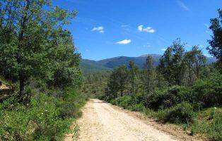 Camino Ermita de San Benito - Senderismo Riaza