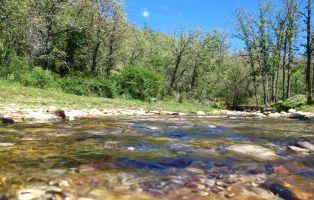 Arroyo de San Benito - Tramo de la ruta de senderismo en Riaza