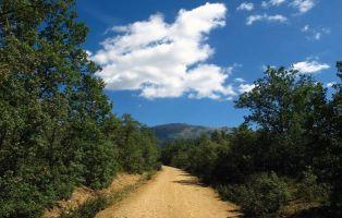 Pico del Lobo - Sierra de Ayllón - Senderismo Segovia