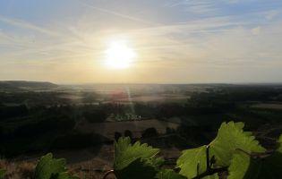 Puesta de Sol en la Ribera del Duero