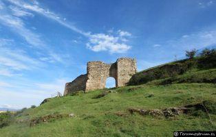 Puerta de la Fuerza - Calzada romana - Hoces del río Duratón