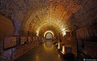 Museo Romano - Astorga