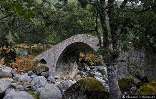 La Puente del Puerto - Candeleda