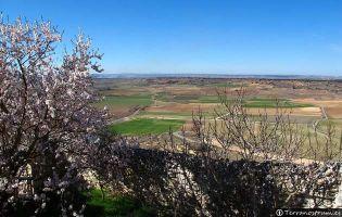 Panorámicas desde Haza - Ribera del Duero