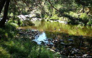 Río Tormes - Hoyos del Espino