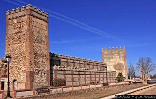 Visitar Madrigal de las Altas Torres